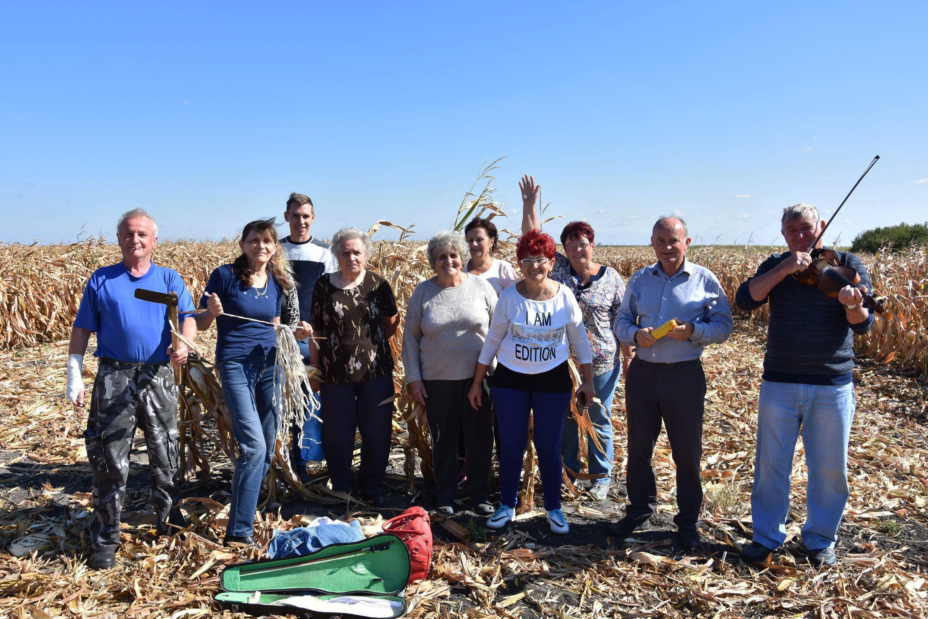 13. Festival kukuruza u Tordi (FOTO)