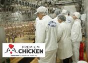 Prijavite se: Premium Chicken zapošljava
