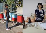 Poboljšanje ženskog preduzetništva na teritoriji opštine Žitište
