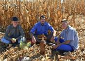 11. Festival kukuruza u Tordi (Foto)