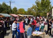 Opštinski školski vašar u četvrtak na Trgu u Žitištu