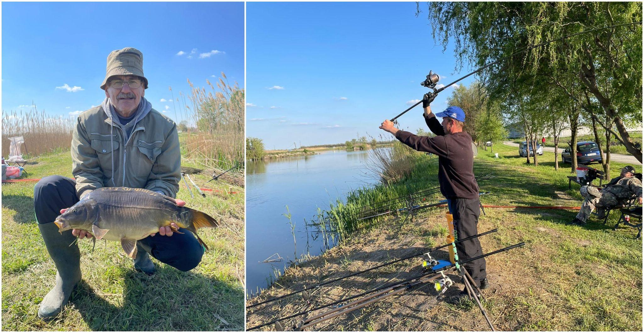 Torak: Takmičenje u pecanju šarana